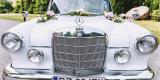 Na wynajem piękny Mercedes Skrzydlak klasyk zabytkowe auto do ślubu, Garby - zdjęcie 6