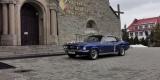 Zabytkowy Ford Mustang 1967 rok, Kraków - zdjęcie 3