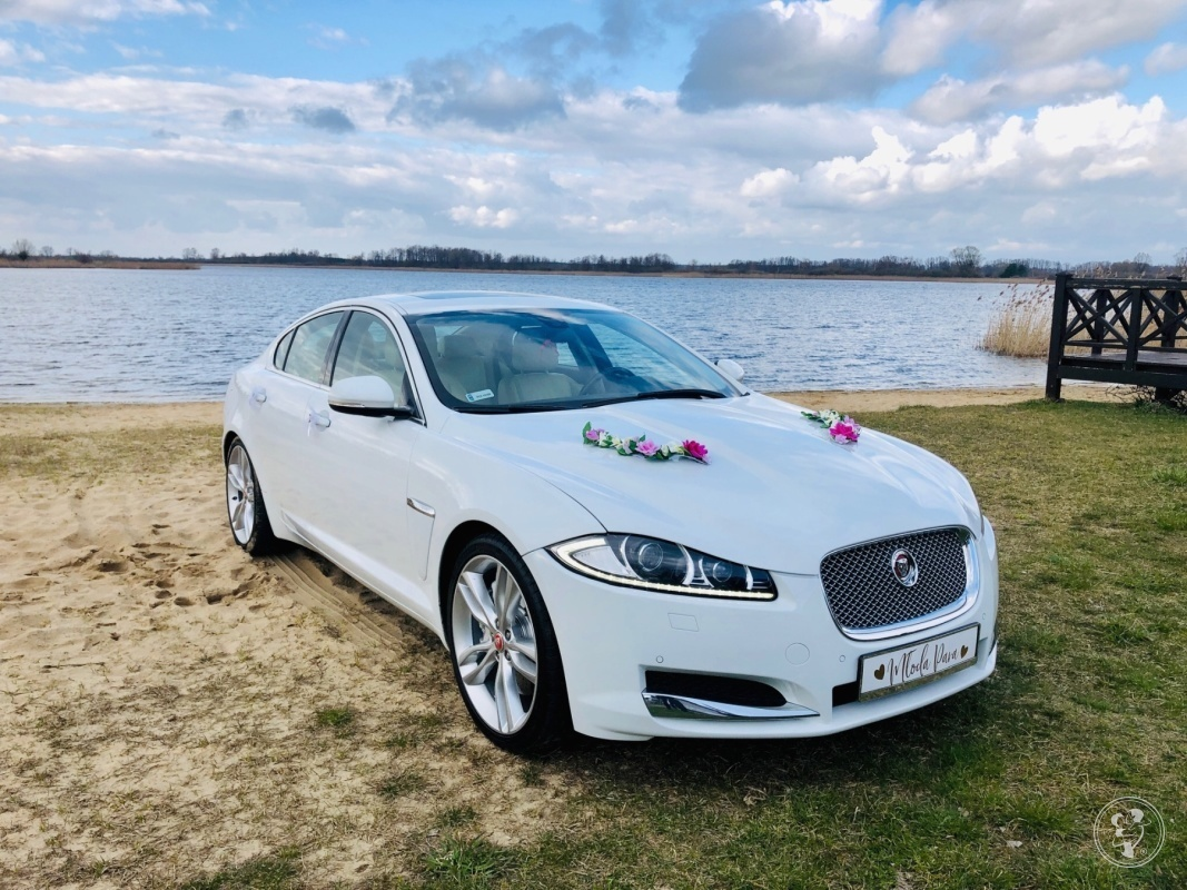 Samochód Auto do ślubu, na wesele Jaguar XF, Leszno - zdjęcie 1