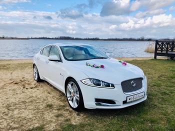 Samochód Auto do ślubu, na wesele Jaguar XF, Samochód, auto do ślubu, limuzyna Luboń