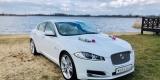Samochód Auto do ślubu, na wesele Jaguar XF, Leszno - zdjęcie 6