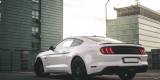 FORD MUSTANG GT, BMW, CHRYSLER, MERCEDES   First Class Rental, Lublin - zdjęcie 3