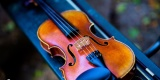 SONORIA - oprawa muzyczna ślubu WIOLONCZELA / SKRZYPCE / FORTEPIAN, Olsztyn - zdjęcie 5