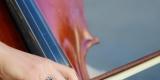SONORIA - oprawa muzyczna ślubu WIOLONCZELA / SKRZYPCE / FORTEPIAN, Olsztyn - zdjęcie 6