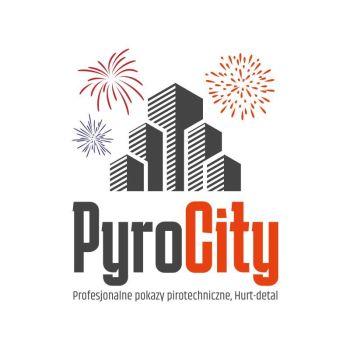 PyroCity Profesjonalne pokazy pirotechniczne, Pokaz sztucznych ogni Pleszew