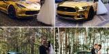 Złoty Mustang,Corvetta,Maserati,Camaro,Audi ! OBSŁUGUJEMY CAŁĄ POLSKĘ, Katowice - zdjęcie 4