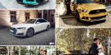Złoty Mustang,Corvetta,Maserati,Camaro,Audi ! OBSŁUGUJEMY CAŁĄ POLSKĘ, Katowice - zdjęcie 6