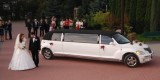 Samochody do slubu,autoszyk limuzyny,wynajem.Excalibur-Chrysler limo., Warszawa - zdjęcie 3