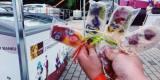 Patykove-  lody na patyku z jadalnymi kwiatami, Wrocław - zdjęcie 6