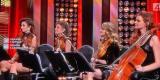 GLAM quartet - kwartet smyczkowy - oprawa muzyczna ślubu, Poznań - zdjęcie 5