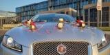 Ekskluzywnym jaguarem XF do ślubu / Indus Silver /, Kraków - zdjęcie 2