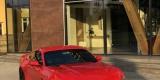 Samochod do ślubu, auto na wesele CZERWONY Mustang GT wynajem, Rzeszów - zdjęcie 5