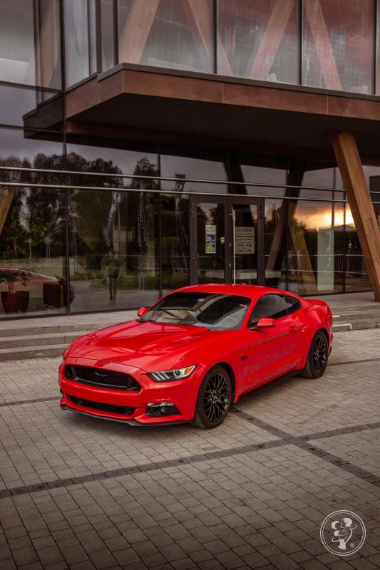 Samochod do ślubu, auto na wesele CZERWONY Mustang GT wynajem, Rzeszów - zdjęcie 1