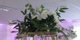 White Rose - dekoracje ślubne, kompleksowa oprawa florystyczna, Bydgoszcz - zdjęcie 4