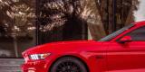 Samochod do ślubu, auto na wesele CZERWONY Mustang GT wynajem, Rzeszów - zdjęcie 3