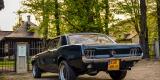 Ford Mustang Klasyk do Ślubu 1967, Gorlice - zdjęcie 3
