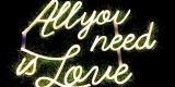 wypozyczalnia-weselna wysyłkowa wypożyczalnia dekoracji, neony, Augustów - zdjęcie 3