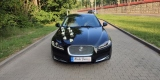 Auto do Ślubu Jaguar XF PREMIUM LUXURY, Białystok - zdjęcie 5