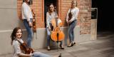 La Belle Quartet - kwartet smyczkowy na Twój ślub, Warszawa - zdjęcie 3