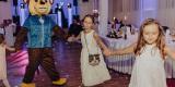 Animacje dla dzieci, wiele atrakcji, chodzące maskotki MASKOTKOLANDIA, Trzebinia - zdjęcie 2