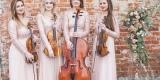 VIOLINO Oprawa Muzyczna - skrzypce | duet | trio | kwartet smyczkowy, Poznań - zdjęcie 2