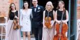 VIOLINO Oprawa Muzyczna - skrzypce | duet | trio | kwartet smyczkowy, Poznań - zdjęcie 4
