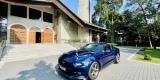 Najlepsze Auto o Ślubu ♥️👰🏼🤵🏼Piękne brzmienie   Ford Mustang, Bydgoszcz - zdjęcie 4
