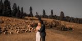 Małe Atelier - fotografia ślubna, Nowy Sącz - zdjęcie 3