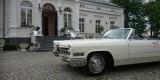 Klasyk do ślubu. Cadillac DeVille Cabrio 1966 rok., Warszawa - zdjęcie 3