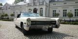 Klasyk do ślubu. Cadillac DeVille Cabrio 1966 rok., Warszawa - zdjęcie 6