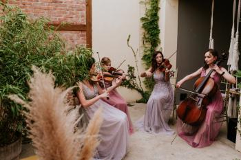 Manufaktura Muzyki -skrzypce,śpiew,kwartet smyczkowy,harfa,flet,organy, Oprawa muzyczna ślubu Pabianice
