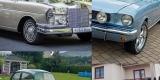 Car Of Love - Mustang Mercedes Garbus boho klasyk zabytek do ślubu, Bielsko-Biała - zdjęcie 1