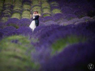 AnMa Studio - Wedding Photography &  Wedding film,  Tychy