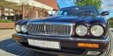 Jaguar XJ X300 Long samochód auto do ślubu, Lublin - zdjęcie 5
