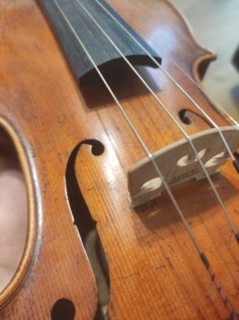Skrzypce- oprawa muzyczna ślubu, Oprawa muzyczna ślubu Olsztyn