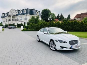 Samochód Auto do ślubu, na wesele Jaguar XF, Samochód, auto do ślubu, limuzyna Mosina