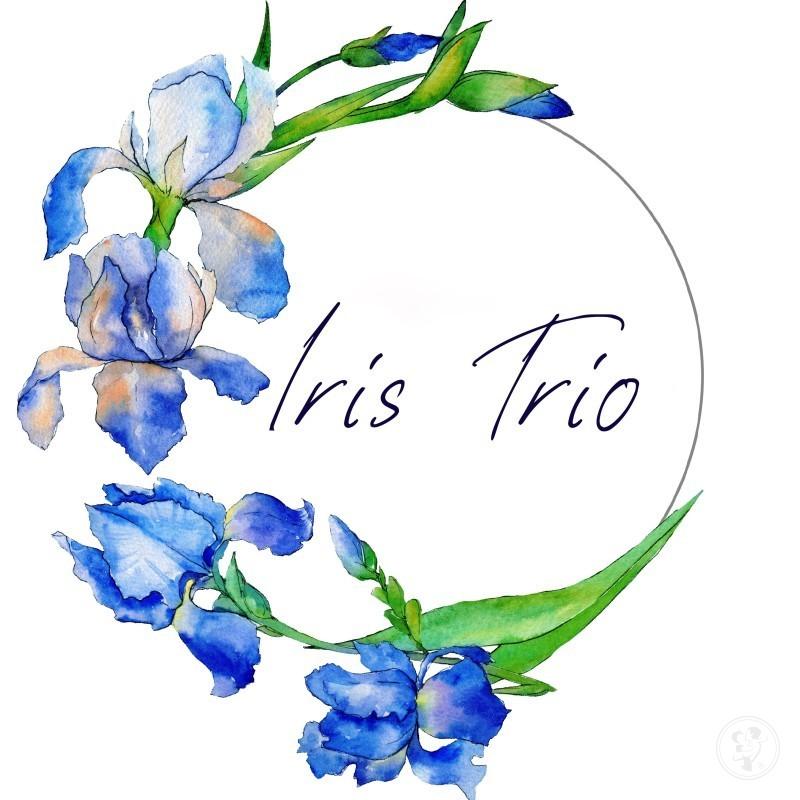 Trio smyczkowe Iris Trio, Kraków - zdjęcie 1