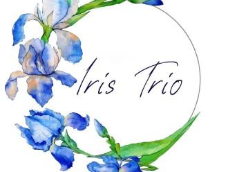 Trio smyczkowe Iris Trio,  Kraków