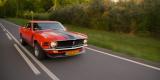 | Ford Mustang 1970 r. | BOSS 302 | V8 | Klasyk | Retro | Do ślubu |, Rybnik - zdjęcie 4