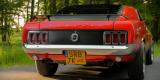 | Ford Mustang 1970 r. | BOSS 302 | V8 | Klasyk | Retro | Do ślubu |, Rybnik - zdjęcie 6