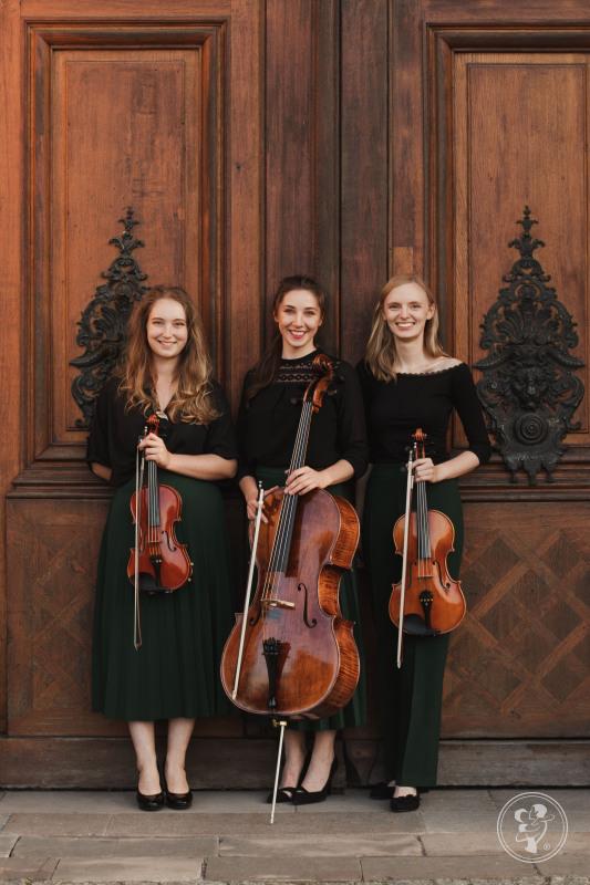 Profesjolana oprawa muzyczna ślubu - Fresco Trio, Katowice - zdjęcie 1