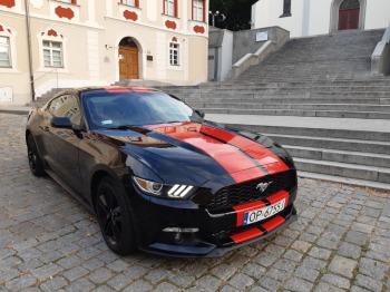 Piękny Ford Mustang na Ślub, Samochód, auto do ślubu, limuzyna Namysłów