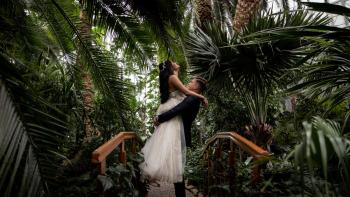 Wehaveit Studio / Twój film, twoja historia, Kamerzysta na wesele Toszek