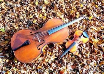 Skrzypce i wiolonczela Violincello, Oprawa muzyczna ślubu Sosnowiec