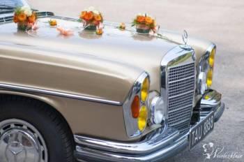 Mercedes filmowy., Samochód, auto do ślubu, limuzyna Alwernia