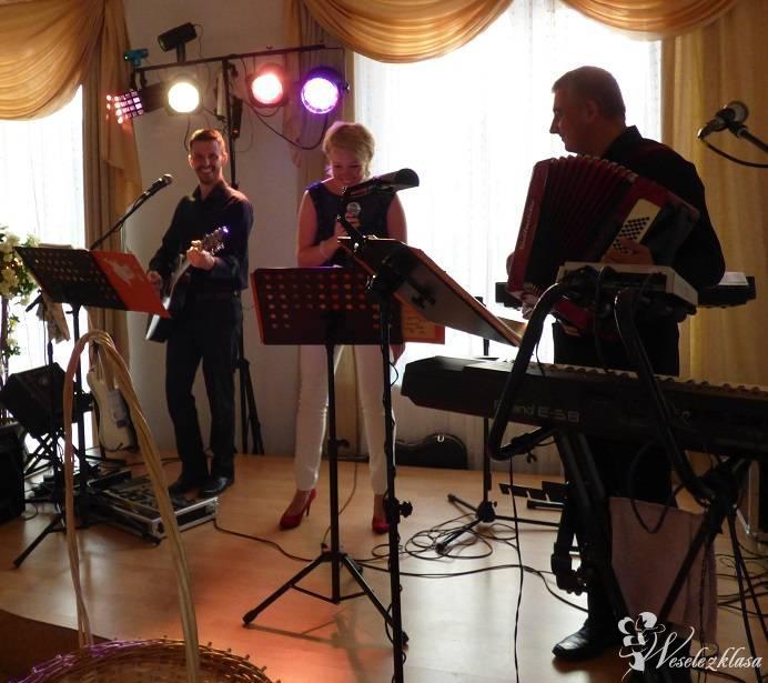 Zespół TROLL profesjonalna oprawa muzyczna wesela, Warszawa - zdjęcie 1