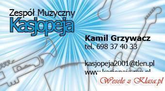 Zespól muzyczny Kasjopeja, Zespoły weselne Pabianice