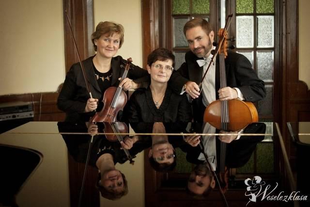 Trio Muzyczne ARTE, Słupsk - zdjęcie 1