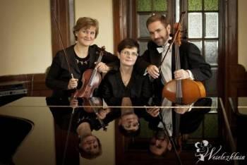 Trio Muzyczne ARTE, Oprawa muzyczna ślubu Lębork
