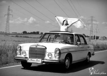 Mercedes W108 SE280 - Klasyk / Limuzyna, Samochód, auto do ślubu, limuzyna Poddębice